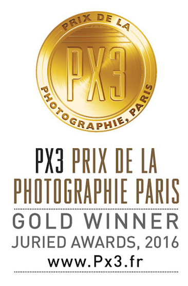 Gold-prix-de-la-photographie.png